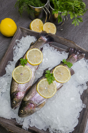 Fresh trout with lemon Reklamní fotografie - 31517043