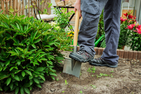 gardening: A young man working in the garden
