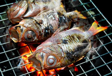 Fishes grill on the charcoal cooking photo in flash lighting. Stock Photo