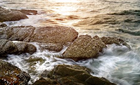 mare agitato: Rock in clear sea water with  wave photo with outdoor sun light. Archivio Fotografico