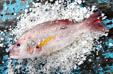 Fresh red snapper fish from fishery market with salt set on wooden plate. Stock Photo