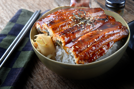 Japanese eel grilled with rice or Unagi don set on plate in Japanese style with studio lighting. Stock Photo