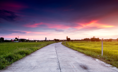 drive through: Cement road in the green field at the country side  with outdoor sunset low lighting.