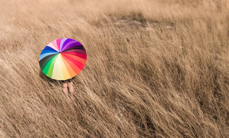 Colorful umbrella in the dry meadow with art concept photo with outdoor sun lighting. Stock Photo