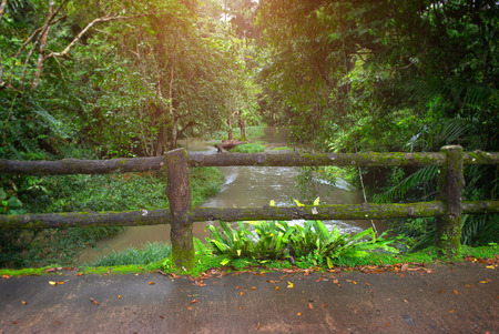 Concrete fence post bridge with moss in the nature of national park in thailand with rainy low lighting.