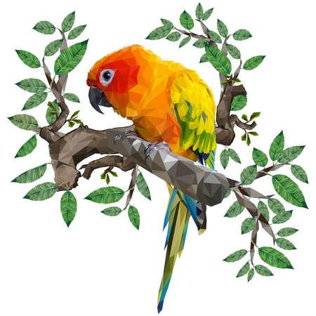 Illustration low polygonal vector drawing of sun conure parrot bird.