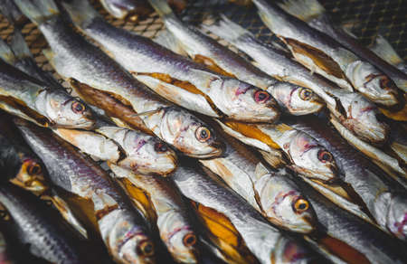 Dried and salty mullet fishes group with sun lighting. Stockfoto