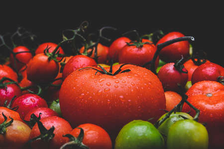 Mix tomatoes with black background lowlighting. 版權商用圖片 - 163963170