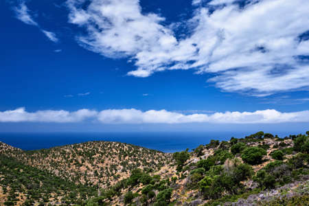 Typical Greek or Cretan landscape, hills and mountains, spring foliage, bush, olive tree, rocky road, path. Akrotiri peninsula, Chania, Crete, Greece Reklamní fotografie