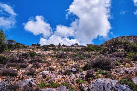 Upshot of beautiful typical Greek landscape, clouds in clear blue sky. Low bending tree, bushes on rocky hills. Akrotiri, Chania region, Crete, Greece Reklamní fotografie