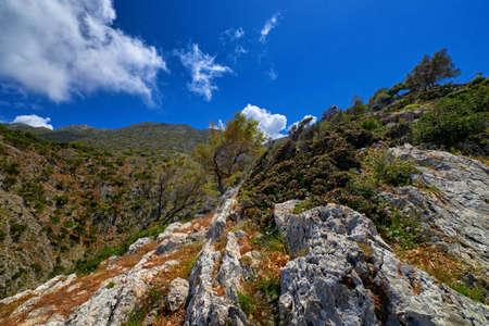 Typical Greek view, mountains, bushes, rocky slopes, wind-swept olive trees, blue sky, great clouds. Akrotiri peninsula, Chania region, Crete, Greece. Reklamní fotografie