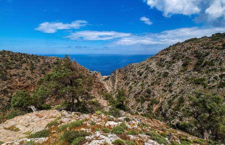 Typical Greek landscape, hill, spring foliage, bushes, olive trees. Clear blue sky, beautiful clouds. Akrotiri peninsula, Chania region, Crete, Greece