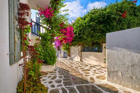 Beautiful traditional streets of Greek island towns. Whitewashed houses, bougainvillea in blossom, greenery, flower pots, cobblestone. Mykonos, Greece