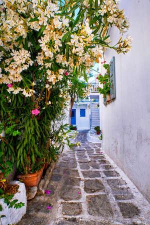 Alleyway in traditional whitewashed Greek island town. Cobblestone paved, narrow street, white bougainvillea. Mediterranean lifestyle. Mykonos, Greece