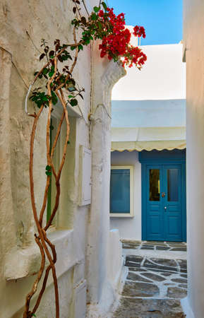 Romantic traditional alleyway of Greek island towns. Whitewashed walls, blue doors and sky, pink bougainvillea, cobblestone streets. Mykonos, Greece