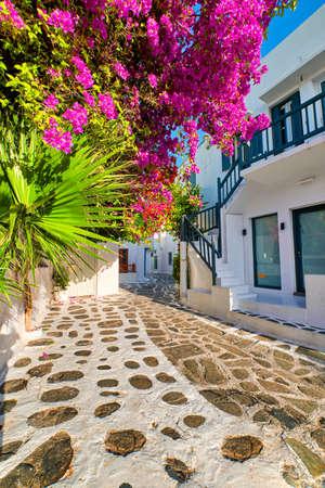Beautiful traditional street in Greek island town. Whitewashed houses, bougainvillea in blossom, greenery, cobblestone. Mykonos, Greece, Vertical shot