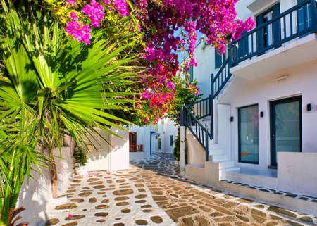 Beautiful traditional street in Greek island town. Whitewashed houses, bougainvillea in blossom, palm tree leaves, cobblestone. Mykonos, Greece