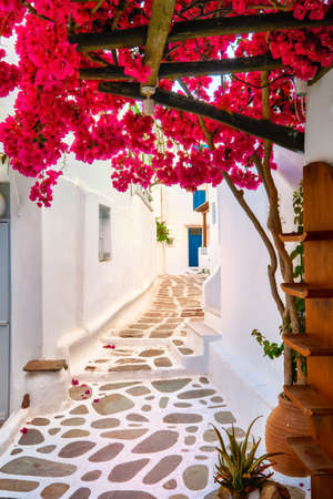 Romantic traditional alleyways of Greek island towns. Whitewashed walls, colorful doors, pink bougainvillea, cobblestone streets. Mykonos, Greece Archivio Fotografico