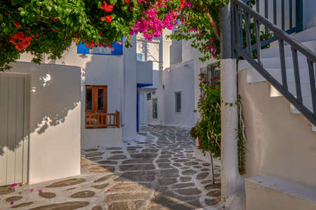 Beautiful traditional street in Greek island town. Whitewashed houses, bougainvillea in blossom, cobblestone. Mykonos, Greece