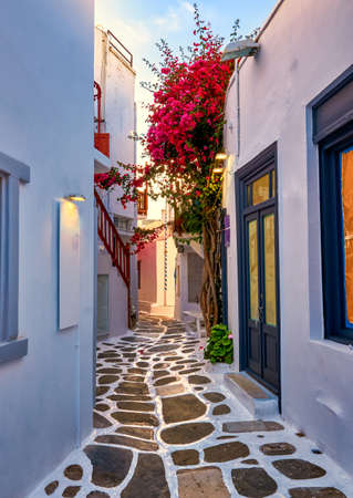 Beautiful traditional narrow cobbled alleys of Greek island towns. Whitewashed houses, shops, morning summer sunshine, bougainvillea, Mykonos, Greece.
