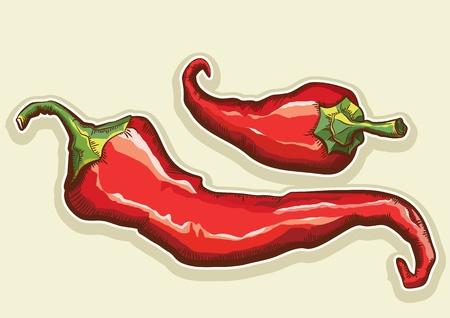 chiles picantes: Chiles rojos aislados para el diseño. Vectores