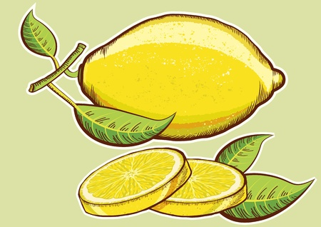 Yellow fresh lemons with green leaves isolated for design Illustration