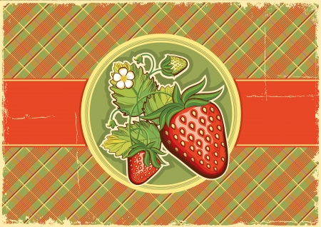 Strawberries vintage background label illustration