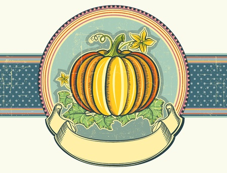 Vintage label illustration of pumpkin on old paper for text Illustration