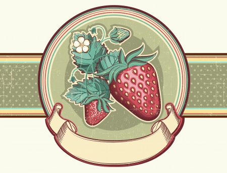 Vintage label with Red strawberries Vector illustration for design Vector