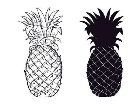 Pineapple black silhouette. Vector Hand Drawn Fruit illustration isolated on white. Sketch drawing vector illustration with text Vettoriali