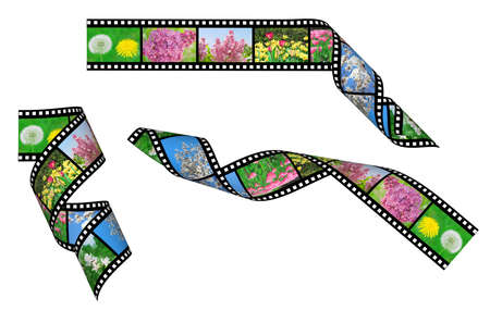 Film strips with a picture of flowers