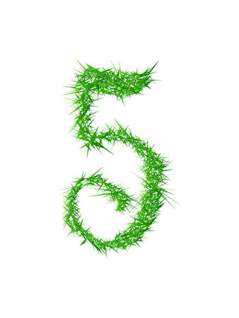 spines: Number 5, grass texture  Vector illustration