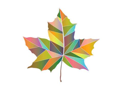 varicoloured: Illustration of maple-leaf varicoloured triangles on white background