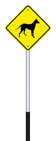 beware dog crossing traffic sign,part of a series Stock Photo - 27049880