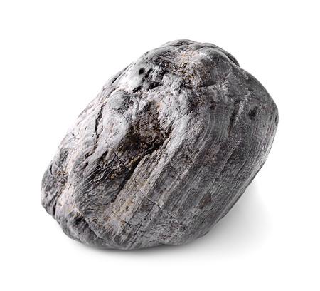 petrified fossil: petrified wood, isolated on white  Stock Photo