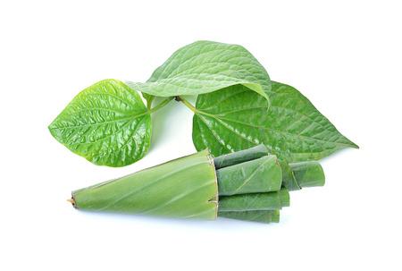hydroxide: Betel leaf isolate on white background Stock Photo