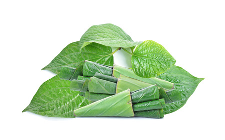betel leaf: Betel leaf isolate on white background Stock Photo