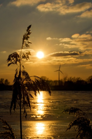 A wind engine enclosed in an idyllic part of nature not far from the center of the metropolis Hamburg Stock Photo - 17859500