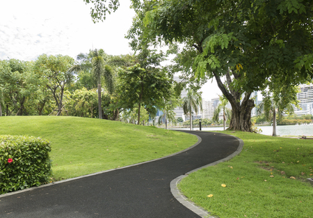 Curve pathway in the green park at the city