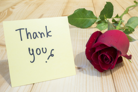 Red rose and word Thank you on colorful note paper with wood background