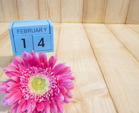 14 february: Pink flower and word 14 February on wood background, Love concept for Valentines Day Stock Photo