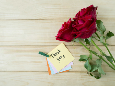 """Red rose and word """"Thank you"""" on colorful note paper with wood background"""
