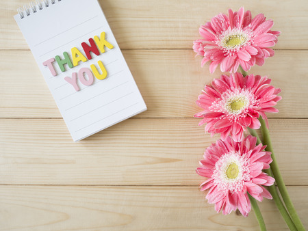 agradecimiento: Pink flower and word Thank you on colorful note paper with wood background