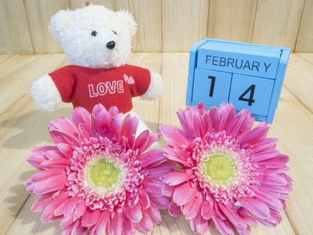 14 february: Pink flower and teddy bear with word 14 February on wood background, Love concept for Valentines Day