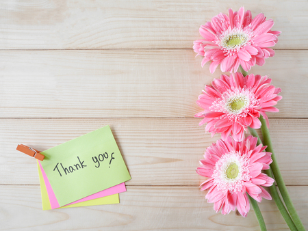 thankfulness: Pink flower and word Thank you on colorful note paper with wood background