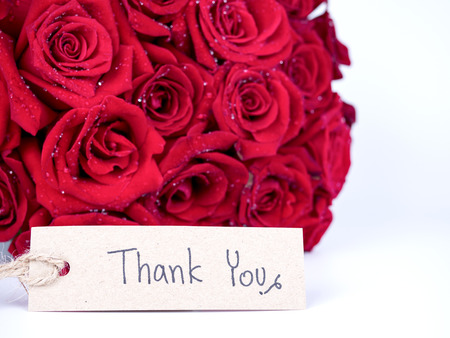Bouquet red roses flower and handwriting word Thank you on isolated  white background Stock Photo