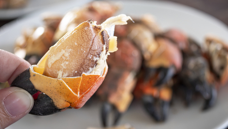 Close up of steamed crab on dish in the restaurant  delicious seafood in Thailand (Selective Focus) Stock Photo