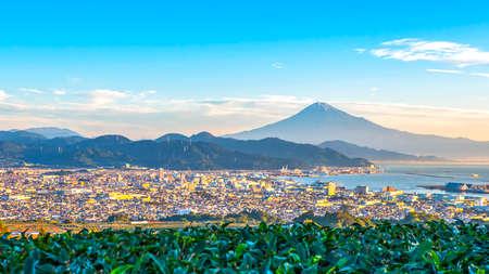 Sunrise over Mt. Fuji / Fuji Mountain and fresh green tea field at Nihondaira, Shizuoka, Japan 版權商用圖片