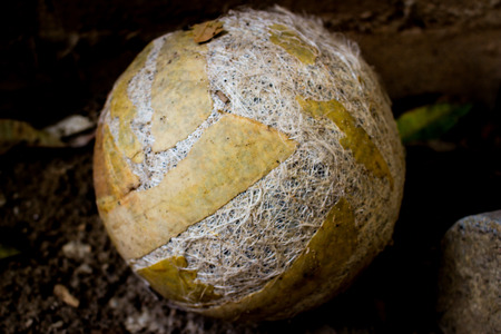 raged: abandoned old volleyball on concrete floor in front of iron fence Stock Photo