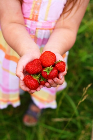 A little girl holding strawberries in her hands
